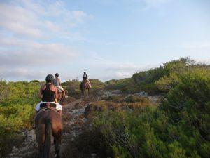 Excursion-Cavalls-Son-Àngel