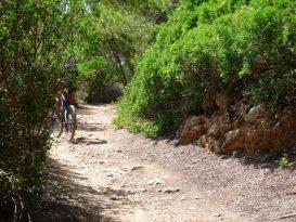 Camino de Binigaus a Cala Escorxada en Bici