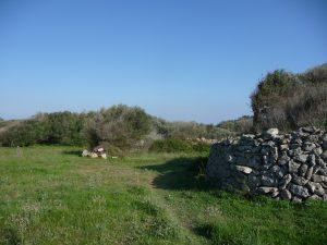 Camino de acceso a Torretrencada