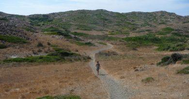 Excursiones a pie: senderismo