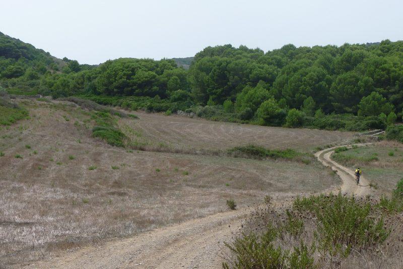 Cami de Cavalls en Bici - Favàritx a Es Grau - P1100455